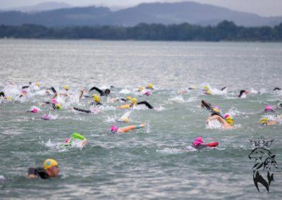 Chiemsee Langstreckenschwimmen 2019